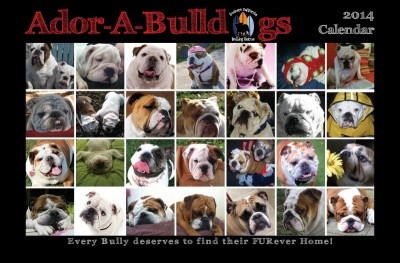 THE 2014 ADOR-A-BULL CALENDAR IS NOW AVAILABLE. CLICK HERE TO GET YOURS TODAY