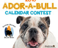 Enter our 2018 Calendar Contest!