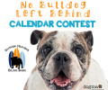 Enter our 2017 Calendar Contest!